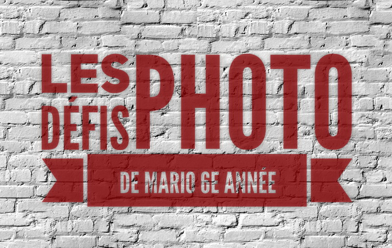 Les défis photo de Mario